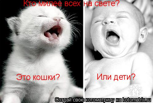 Котоматрица: Кто милее всех на свете? Это кошки? Или дети?