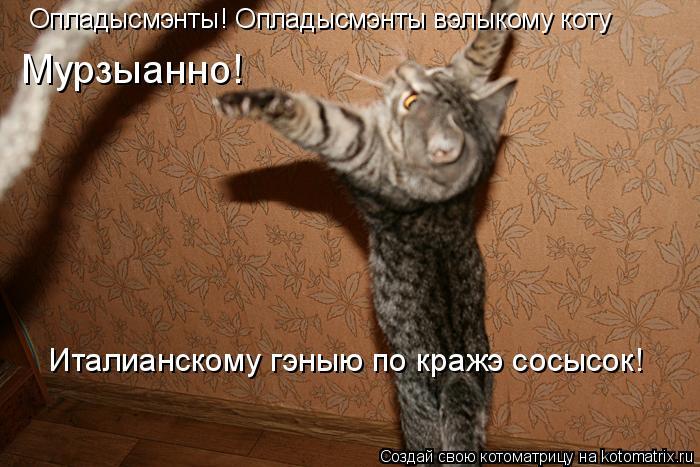 Котоматрица: Опладысмэнты! Опладысмэнты вэлыкому коту  Мурзыанно! Италианскому гэныю по кражэ сосысок!