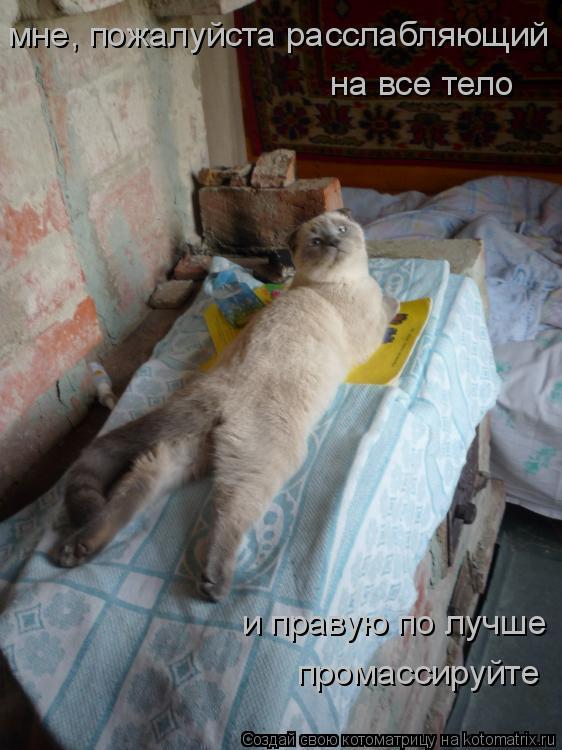 Котоматрица: мне, пожалуйста расслабляющий на все тело и правую по лучше промассируйте