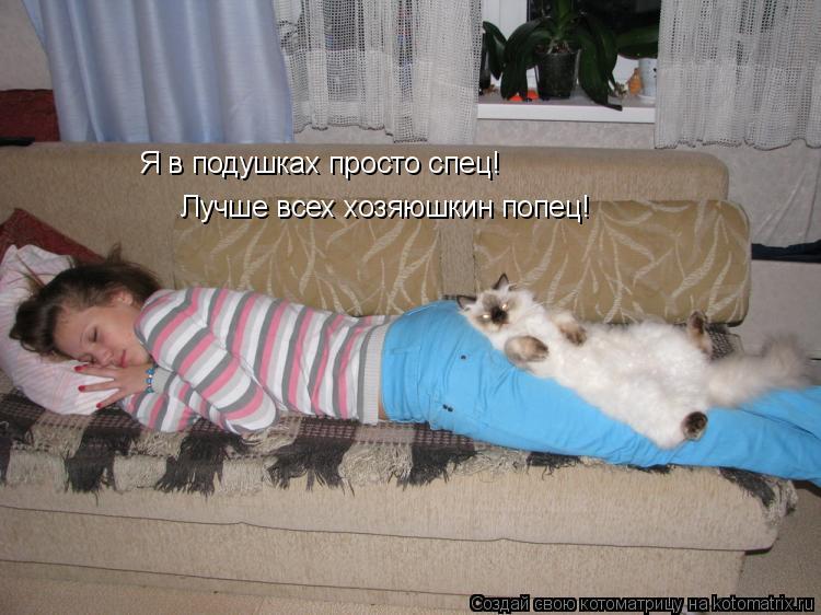 Котоматрица: Я в подушках просто спец! Лучше всех хозяюшкин попец!
