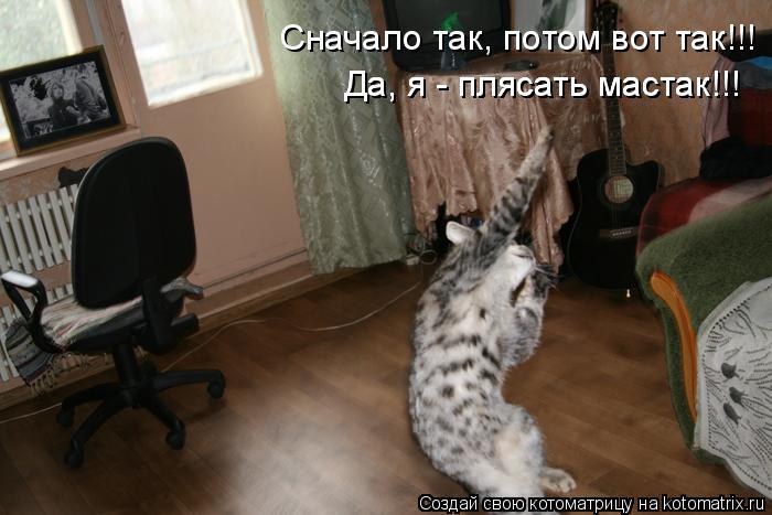 Котоматрица: Сначало так, потом вот так!!! Да, я - плясать мастак!!! Да, я - плясать мастак!!! Да, я - плясать мастак!!!