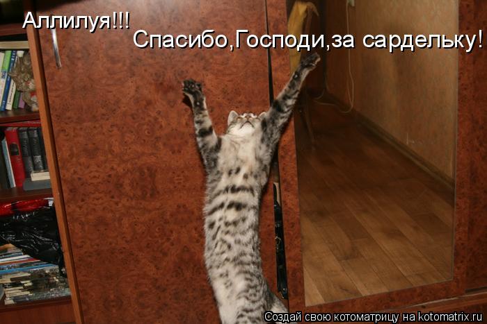 Котоматрица: Аллилуя!!! Спасибо,Господи,за сардельку!
