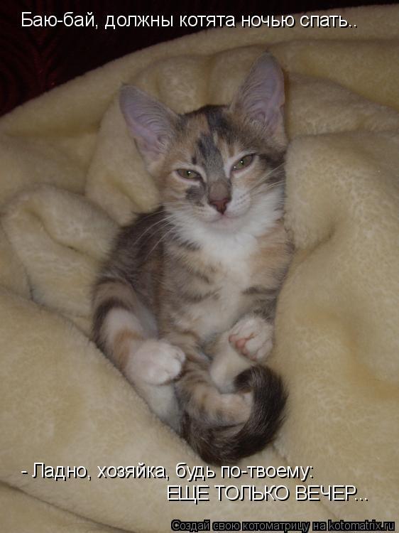 Котоматрица: Баю-бай, должны котята ночью спать..  - Ладно, хозяйка, будь по-твоему: ЕЩЕ ТОЛЬКО ВЕЧЕР...