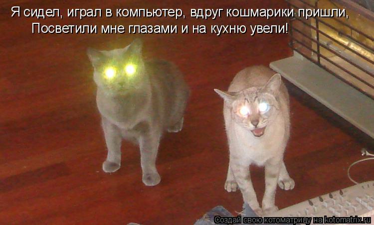Котоматрица: Я сидел, играл в компьютер, вдруг кошмарики пришли, Посветили мне глазами и на кухню увели!