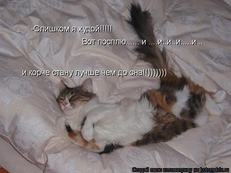 Котоматрица: -Слишком я худой!!!!! Вот посплю...... и ....и..и..и.....и .. и корче стану лучше чем до сна!!)))))))