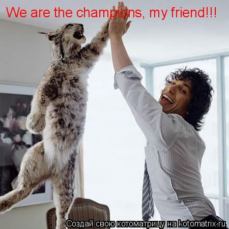 Котоматрица: We are the champions, my friend!!!