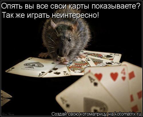 Котоматрица: Опять вы все свои карты показываете? Так же играть неинтересно!