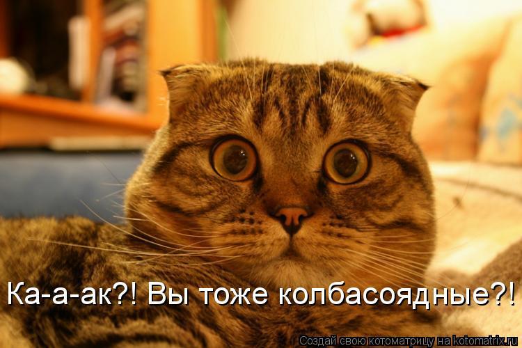 Котоматрица: Ка-а-ак?! Вы тоже колбасоядные?!