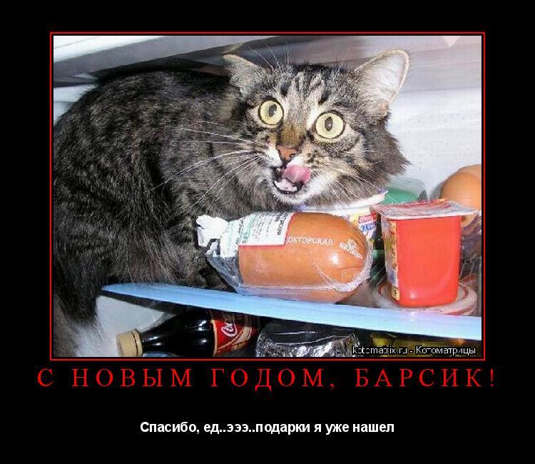 Котоматрица: С Новым Годом, БАРСИК! Спасибо, ед..эээ..подарки я уже нашел