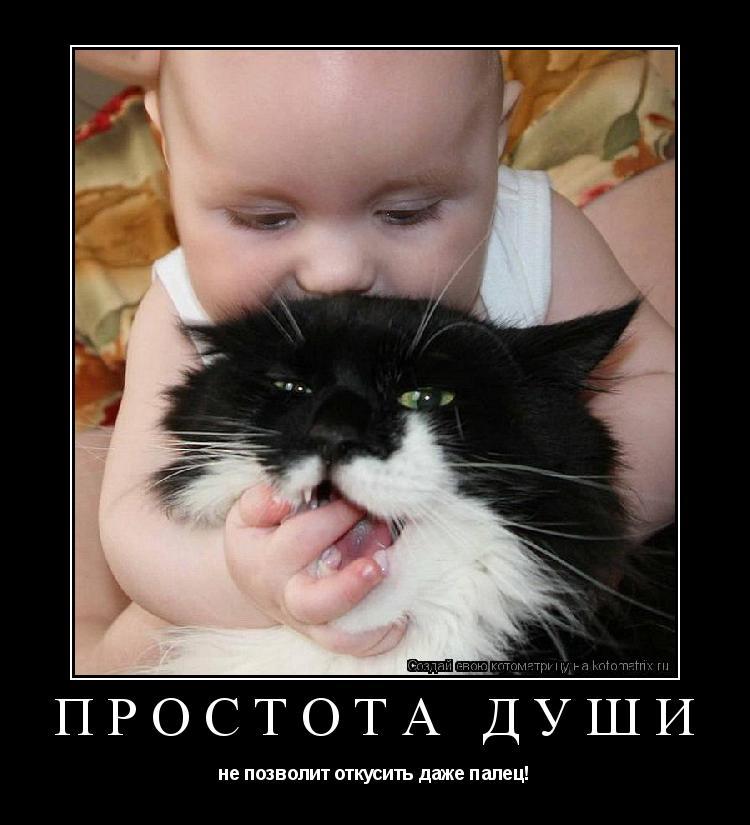 Котоматрица: ПРОСТОТА ДУШИ не позволит откусить даже палец!