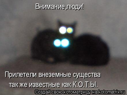 Котоматрица: Внимание,люди! Прилетели внеземные существа так же известные как К.О.Т.Ы.