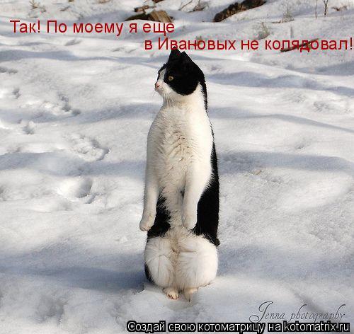Котоматрица: Так! По моему я еще  в Ивановых не колядовал!