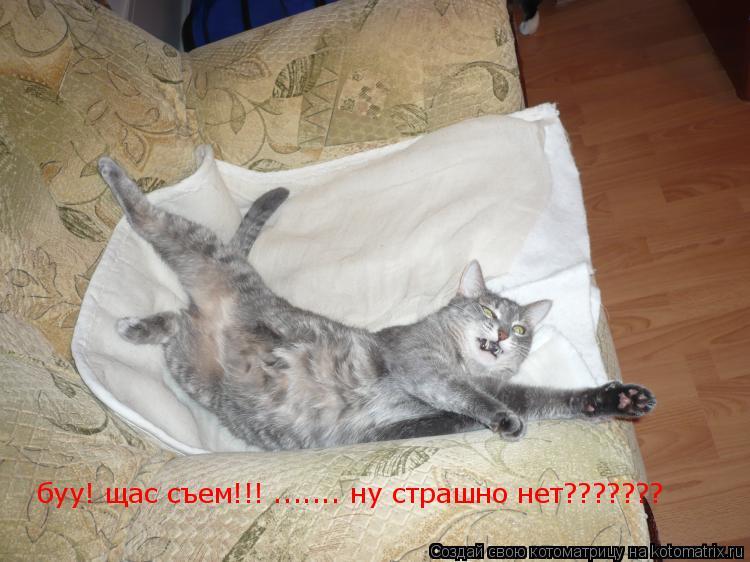 Котоматрица: буу! щас съем!!! ....... ну страшно нет???????
