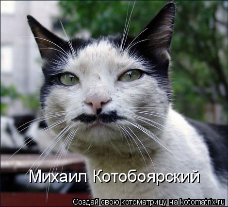 Котоматрица: Михаил Котобоярский
