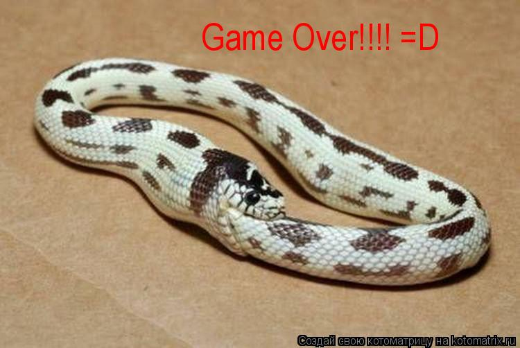 Котоматрица: Game Over!!!! =D