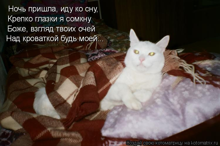 Котоматрица: Ночь пришла, иду ко сну, Крепко глазки я сомкну Боже, взгляд твоих очей Над кроваткой будь моей...