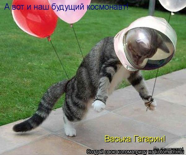 Котоматрица: А вот и наш будущий космонавт! Васька Гагарин!
