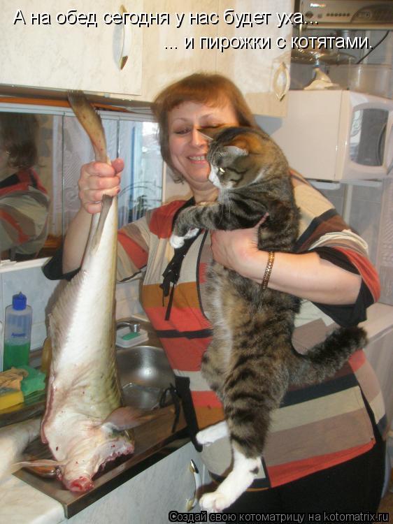 Котоматрица: А на обед сегодня у нас будет уха...  ... и пирожки с котятами.