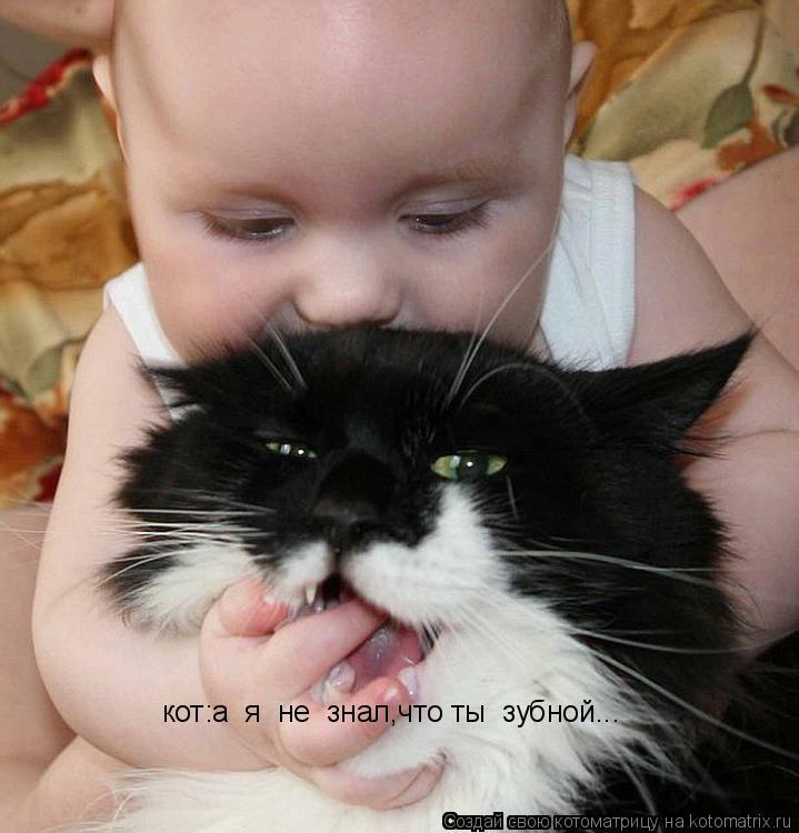 Котоматрица: кот:а  я  не  знал,что ты  зубной...