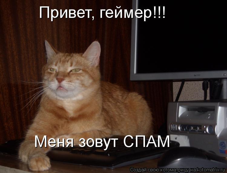 Котоматрица: Привет, геймер!!!  Меня зовут СПАМ