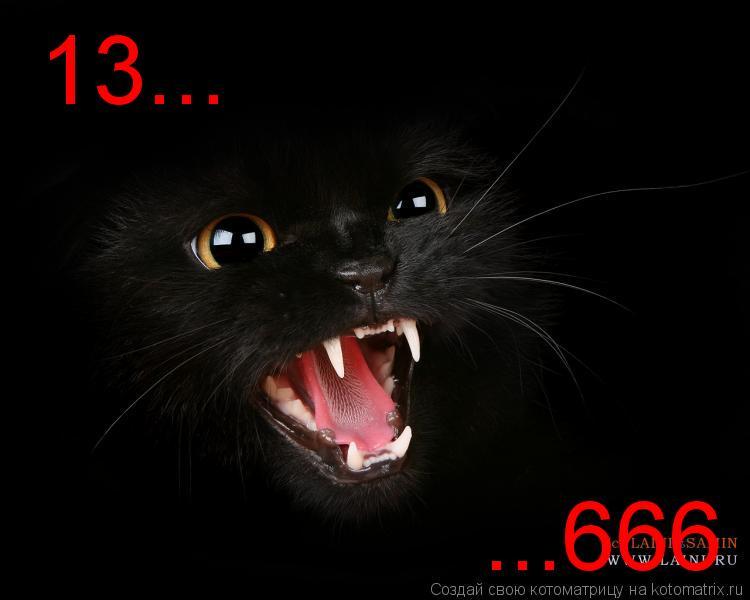 Котоматрица: 13... ...666