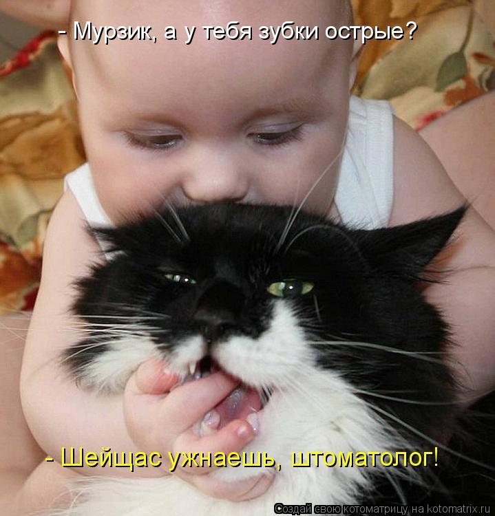 http://kotomatrix.ru/images/lolz/2009/11/03/394741.jpg