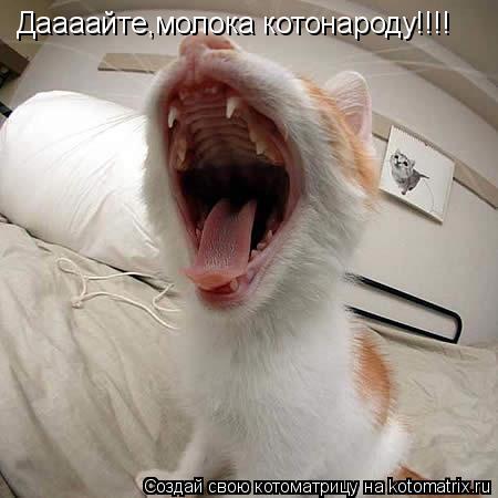 Котоматрица: Даааайте,молока котонароду!!!!