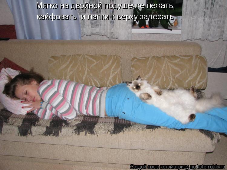 Котоматрица: Мягко на двойной подушечке лежать, кайфовать, и лапки к верху задерать