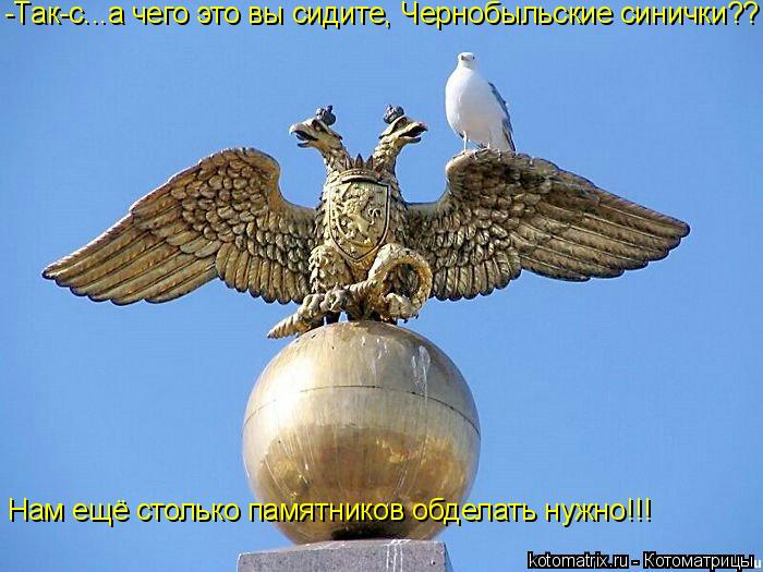 Котоматрица: -Так-с...а чего это вы сидите, Чернобыльские синички?? Нам ещё столько памятников обделать нужно!!!