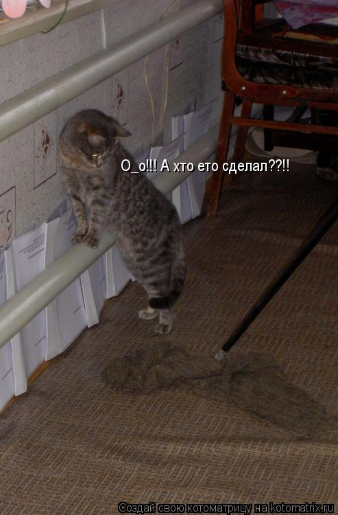 Котоматрица: О_о!!! А хто ето сделал??!!