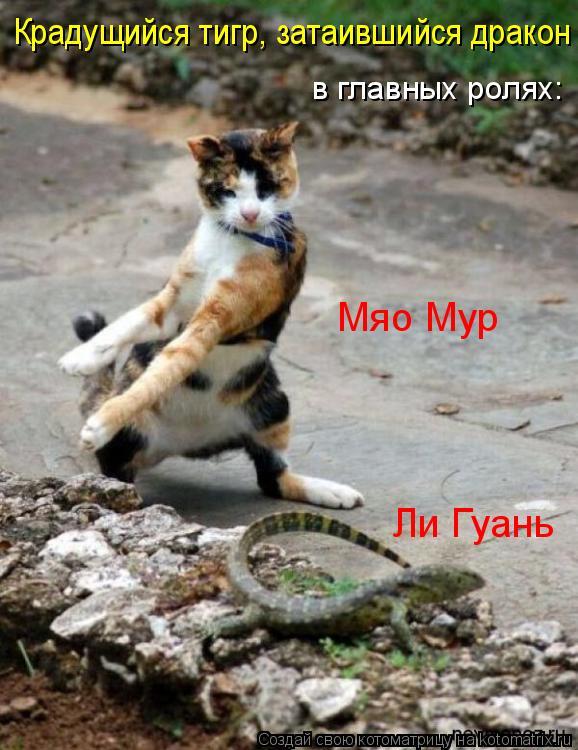 Котоматрица: Крадущийся тигр, затаившийся дракон в главных ролях: Мяо Мур Ли Гуань