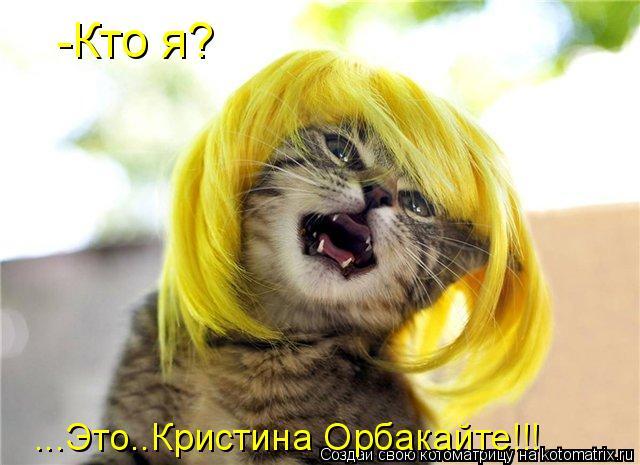 Котоматрица: -Кто я? ...Это..Кристина Орбакайте!!!