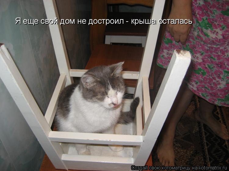 Котоматрица: Я еще свой дом не достроил - крыша осталась