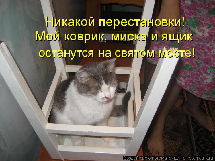 Котоматрица: Никакой перестановки! Мой коврик, миска и ящик останутся на святом месте!
