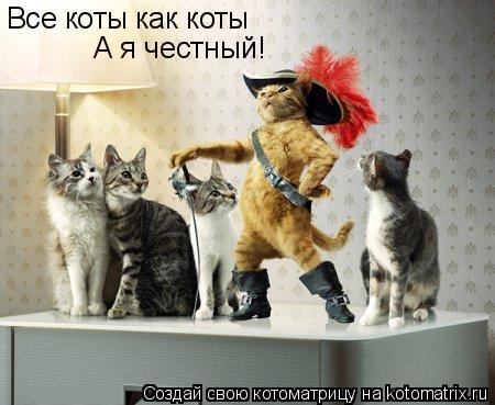 Котоматрица: Все коты как коты А я честный!