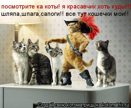 Котоматрица: посмотрите ка коты! я красавчик хоть куды!!! шляпа,шпага,сапоги!! все тут кошечки мои!!