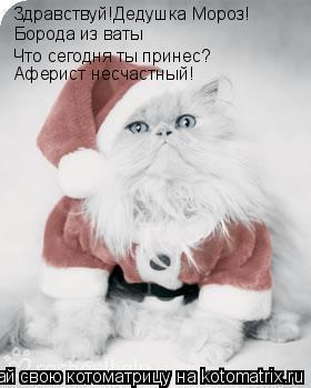 Котоматрица: Здравствуй!Дедушка Мороз! Борода из ваты Что сегодня ты принес? Аферист несчастный!