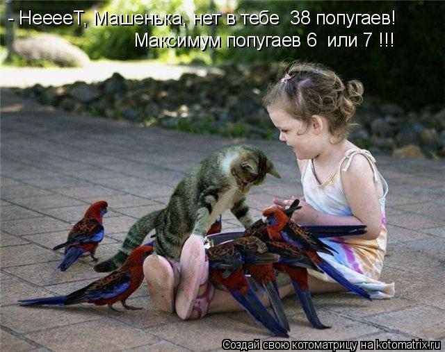 Котоматрица: - НееееТ, Машенька, нет в тебе  38 попугаев! Максимум попугаев 6  или 7 !!!