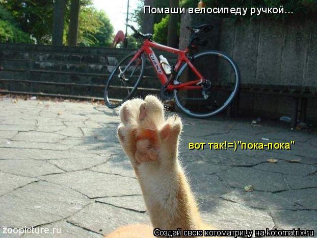 """Котоматрица: Помаши велосипеду ручкой... вот так!=)""""пока-пока"""""""