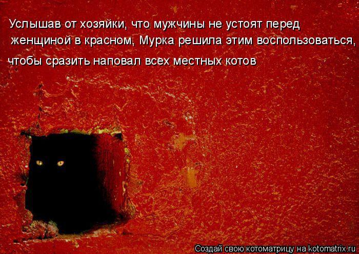 Котоматрица: женщиной в красном, Мурка решила этим воспользоваться, Услышав от хозяйки, что мужчины не устоят перед чтобы сразить наповал всех местных к