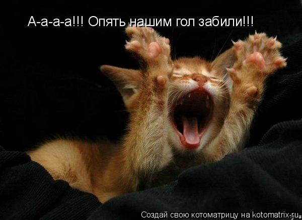 Котоматрица: А-а-а-а!!! Опять нашим гол забили!!!