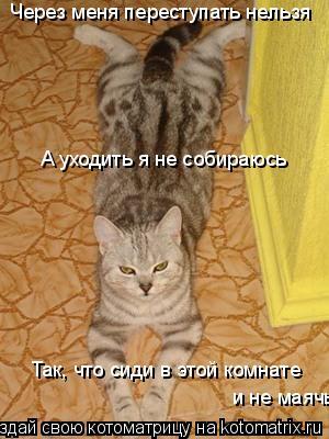 Котоматрица: Через меня переступать нельзя А уходить я не собираюсь Так, что сиди в этой комнате  и не маячь