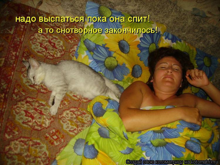 Котоматрица: надо выспаться пока она спит! а то снотворное закончилось!