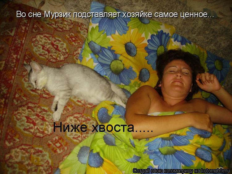 Котоматрица: Во сне Мурзик подставляет хозяйке самое ценное... Ниже хвоста.....