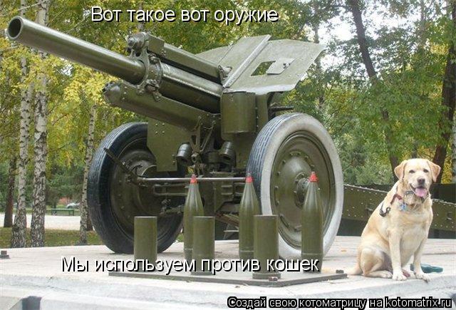 Котоматрица: Вот такое вот оружие Мы используем против кошек