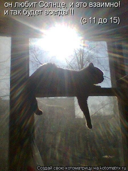 Котоматрица: он любит Солнце, и это взаимно! и так будет всегда!!! (с 11 до 15)