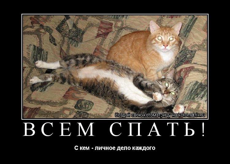 Котоматрица: Всем спать! С кем - личное дело каждого