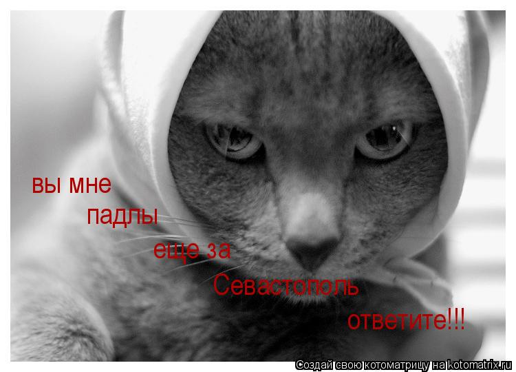 Котоматрица: вы мне падлы еще за Севастополь ответите!!!