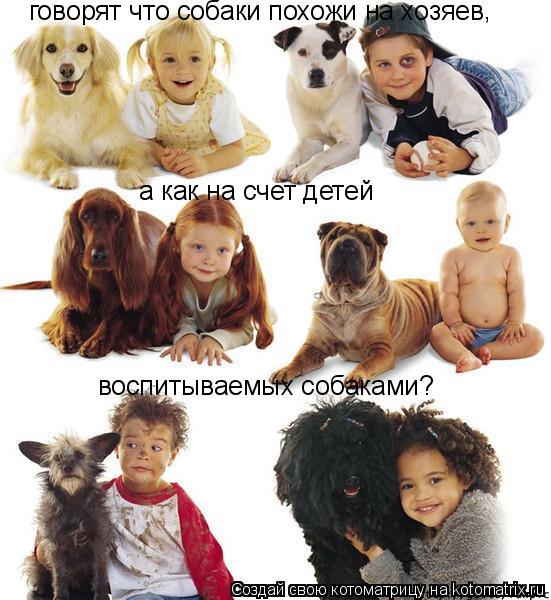 Котоматрица: говорят что собаки похожи на хозяев , а как на счет детей  воспитываемых собаками?