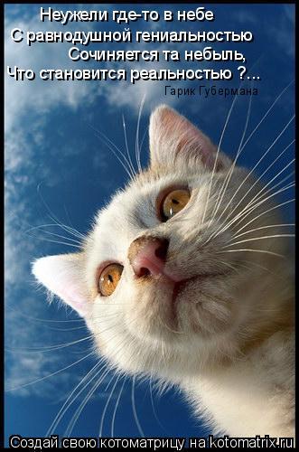 Котоматрица: С равнодушной гениальностью Неужели где-то в небе Сочиняется та небыль, Что становится реальностью ?... Гарик Губермана